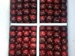 Cherry (air delivery) Черешня - photo 2