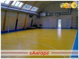 Ангары под разные виды спорта: спортивный зал, каток, площад - фото 4
