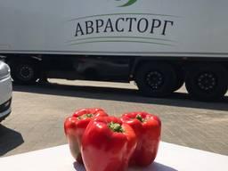 Овощи и фрукты оптом - фото 7
