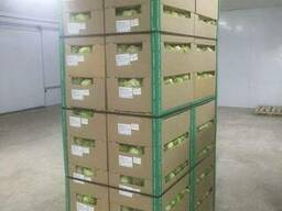 Package and packing of apple - boxes, corrugated boxes - photo 4