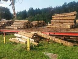 Пиломатериал, дървета, брус строительный лес - фото 6