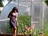 Продажба на оранжерии от производителя в Република Беларус - фото 1