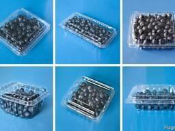 Упаковка для ягод , клубники , яиц, мяса, фрукты прозрачная - фото 4